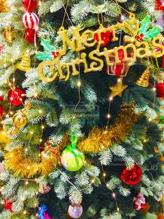 クリスマスツリーの写真・画像素材[1652100]