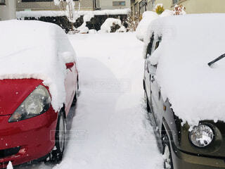 雪国の写真・画像素材[1695977]