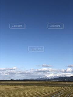 草のフィールドの写真・画像素材[1686233]