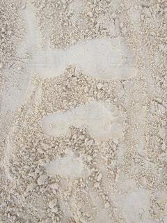 ビーチで足の大きさ比べの写真・画像素材[1615548]