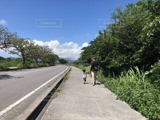 沖縄旅行。歩道を歩くが車なし。の写真・画像素材[1622442]