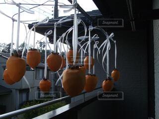干し柿の写真・画像素材[1632859]