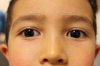 子供の瞳の写真・画像素材[1696765]