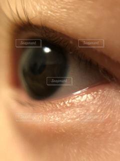 赤ちゃんの瞳の写真・画像素材[1736823]