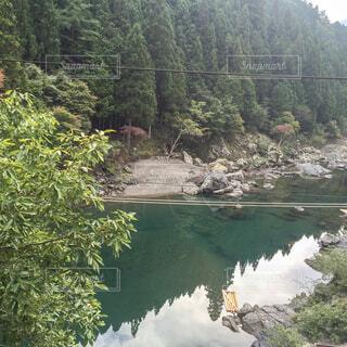 天川村 緑豊かな森と川の写真・画像素材[1595470]