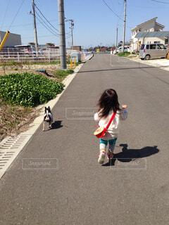 子ども,1人,犬,チワワ,後ろ姿,散歩,女の子,わんこ,ご機嫌,ちびっこ