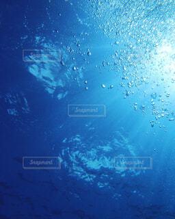 海の中からの太陽光と水泡の写真・画像素材[1881627]
