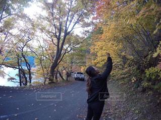 木の隣に立っている女性 - No.779462