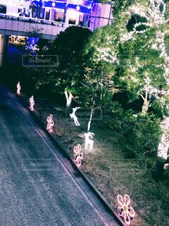 駅前のイルミネーションの写真・画像素材[1630434]