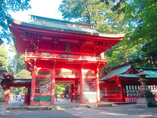 近い生田神社でビルを背景に、朱のアップの写真・画像素材[1600732]