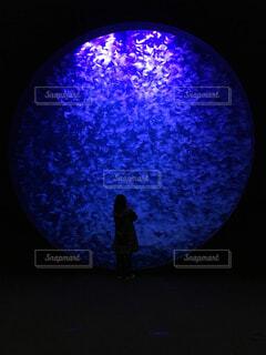 加茂水族館の写真・画像素材[1600837]