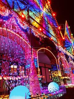 東京ドイツ村の写真・画像素材[1658627]