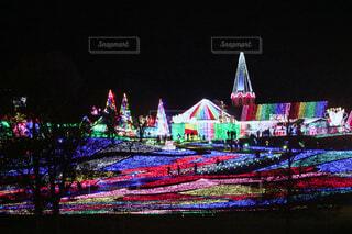 夜の東京ドイツ村の写真・画像素材[1659130]