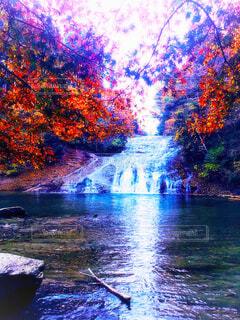 千葉県 粟又の滝の写真・画像素材[1664484]