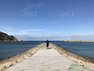 海を眺める女性の写真・画像素材[1619906]