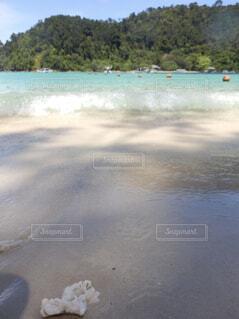 水の体の写真・画像素材[1611100]