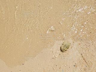 近くのビーチの写真・画像素材[1611203]