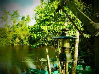 水に座ってランプの写真・画像素材[1616549]