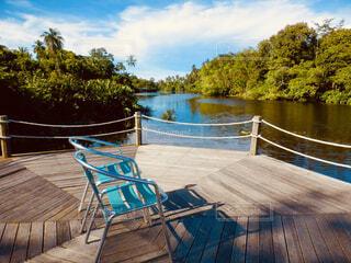 水のプールの横に座っている木製のベンチの写真・画像素材[1616570]