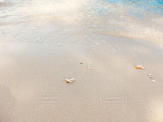近くの砂浜のビーチの写真・画像素材[1616669]