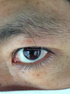目ヂカラの写真・画像素材[58479]