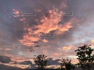夕焼け空に浮かぶ雲の写真・画像素材[1607750]