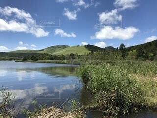 白樺湖の写真・画像素材[1604885]