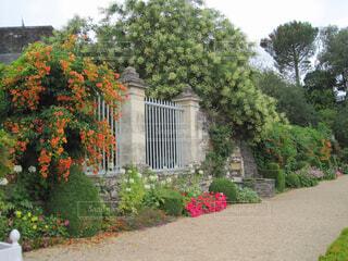 お庭の外からの写真・画像素材[1605775]