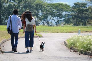愛犬の散歩をする夫婦の写真・画像素材[1605769]