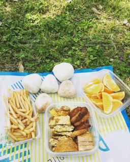 ピクニックの写真・画像素材[1607705]