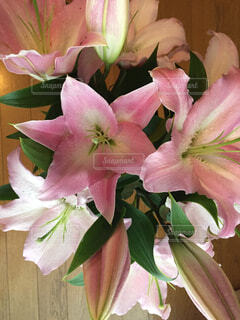 ピンクのユリで一杯の花瓶の写真・画像素材[1612474]