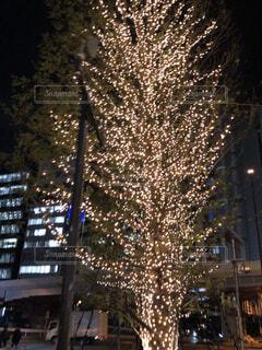渋谷のイルミネーションの写真・画像素材[3361865]