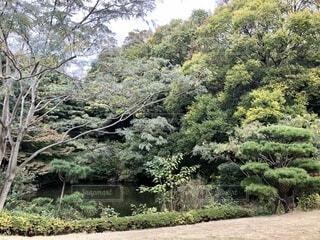 公園の写真・画像素材[3361866]