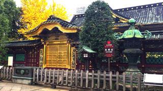 上野東照宮の写真・画像素材[1646809]