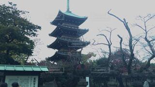 上野東照宮の五重塔の写真・画像素材[1646810]