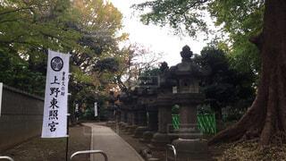 上野東照宮の写真・画像素材[1646812]