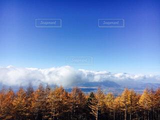 背景の山と木の写真・画像素材[1611624]