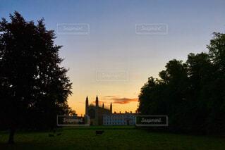 背景の木と大規模なグリーン フィールドの写真・画像素材[742657]