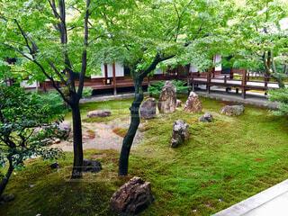 日本庭園の写真・画像素材[1612162]