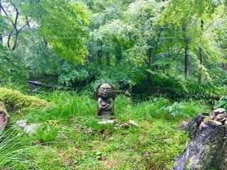 森の中のお地蔵様2の写真・画像素材[1612312]