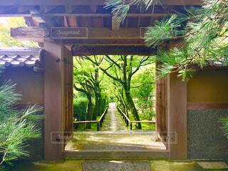 朝の光悦寺の写真・画像素材[1612331]