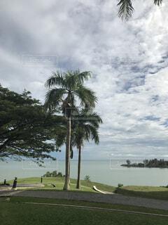 ブルネイの海の写真・画像素材[1611570]