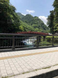 歩道越しの川の写真・画像素材[1614046]