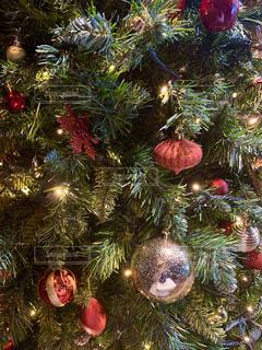 クリスマス ツリーの写真・画像素材[1693119]