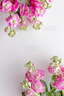 テーブルの上に花瓶の花の花束の写真・画像素材[1746040]