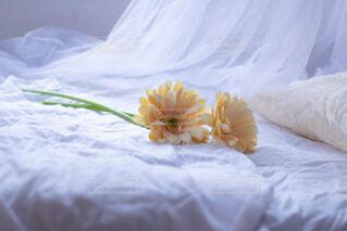 ベッドは、雪で覆われています。の写真・画像素材[1756956]