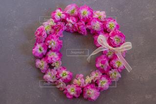 近くの花のアップの写真・画像素材[1773978]