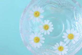 近くの花のアップの写真・画像素材[1849165]