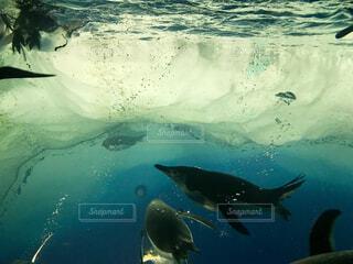 水の写真・画像素材[2158149]
