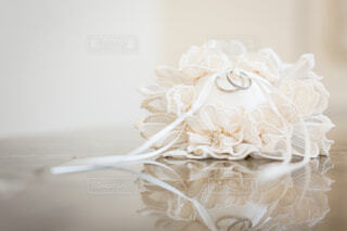 近くの花のアップの写真・画像素材[1618559]